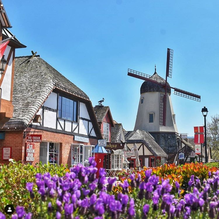 Solvang Windmill in the middle of the day. Makes for a great road trip.