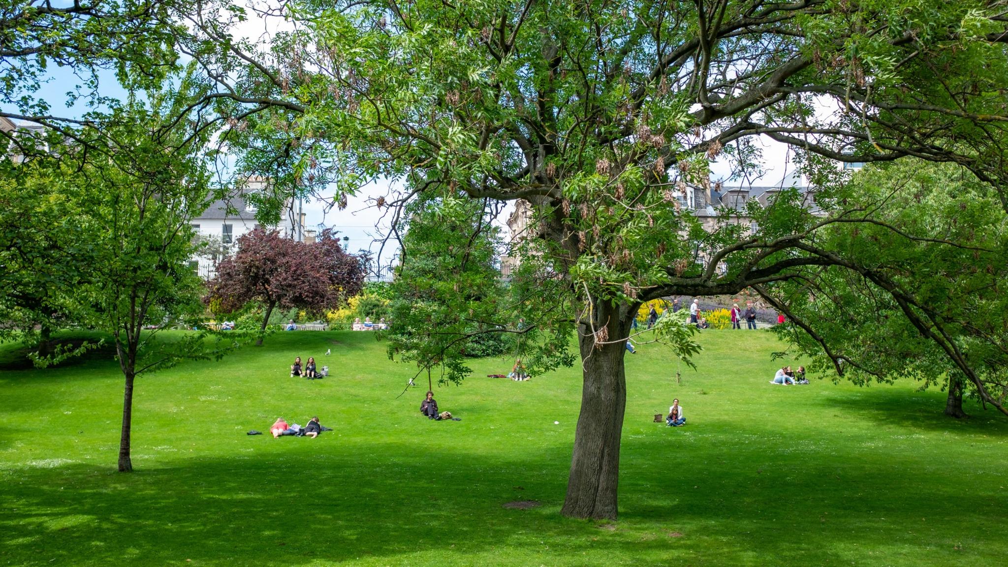 relaxing in park
