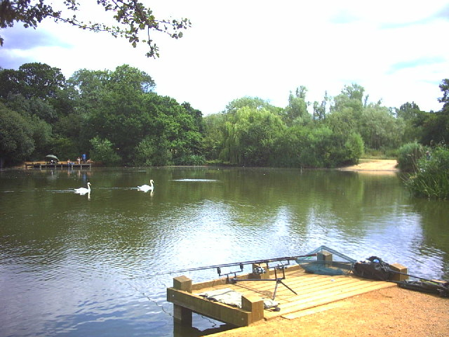 things to do in london - tooting commons