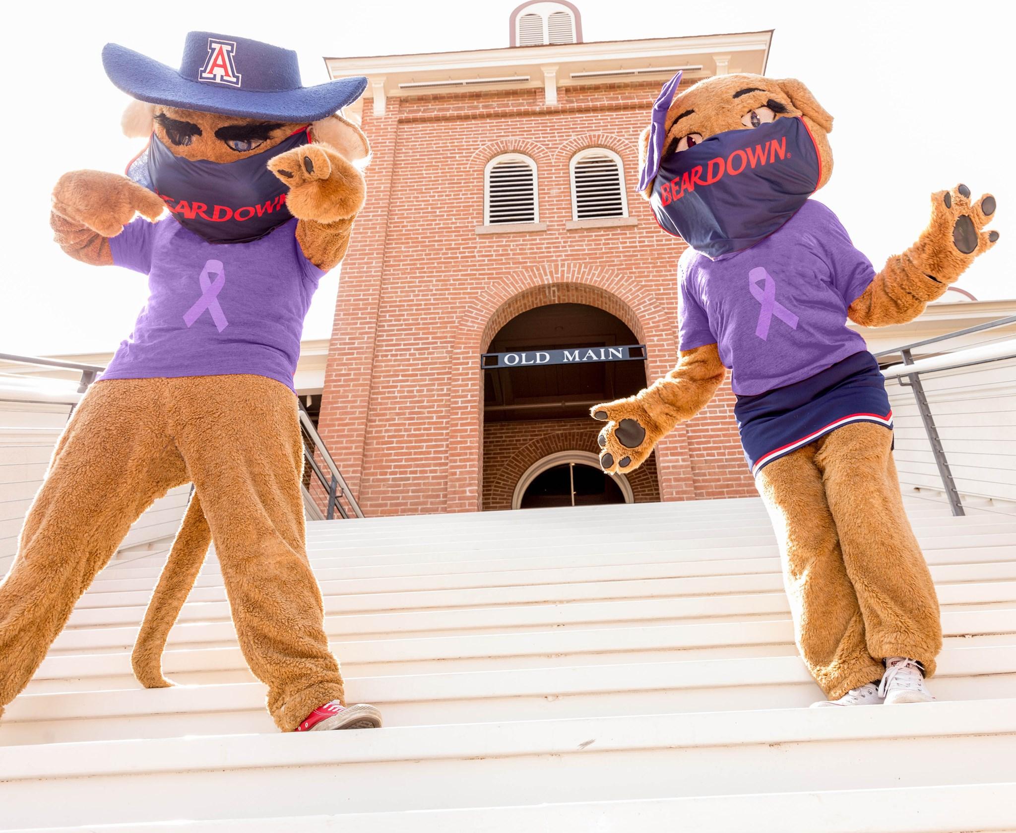 university of AZ mascot