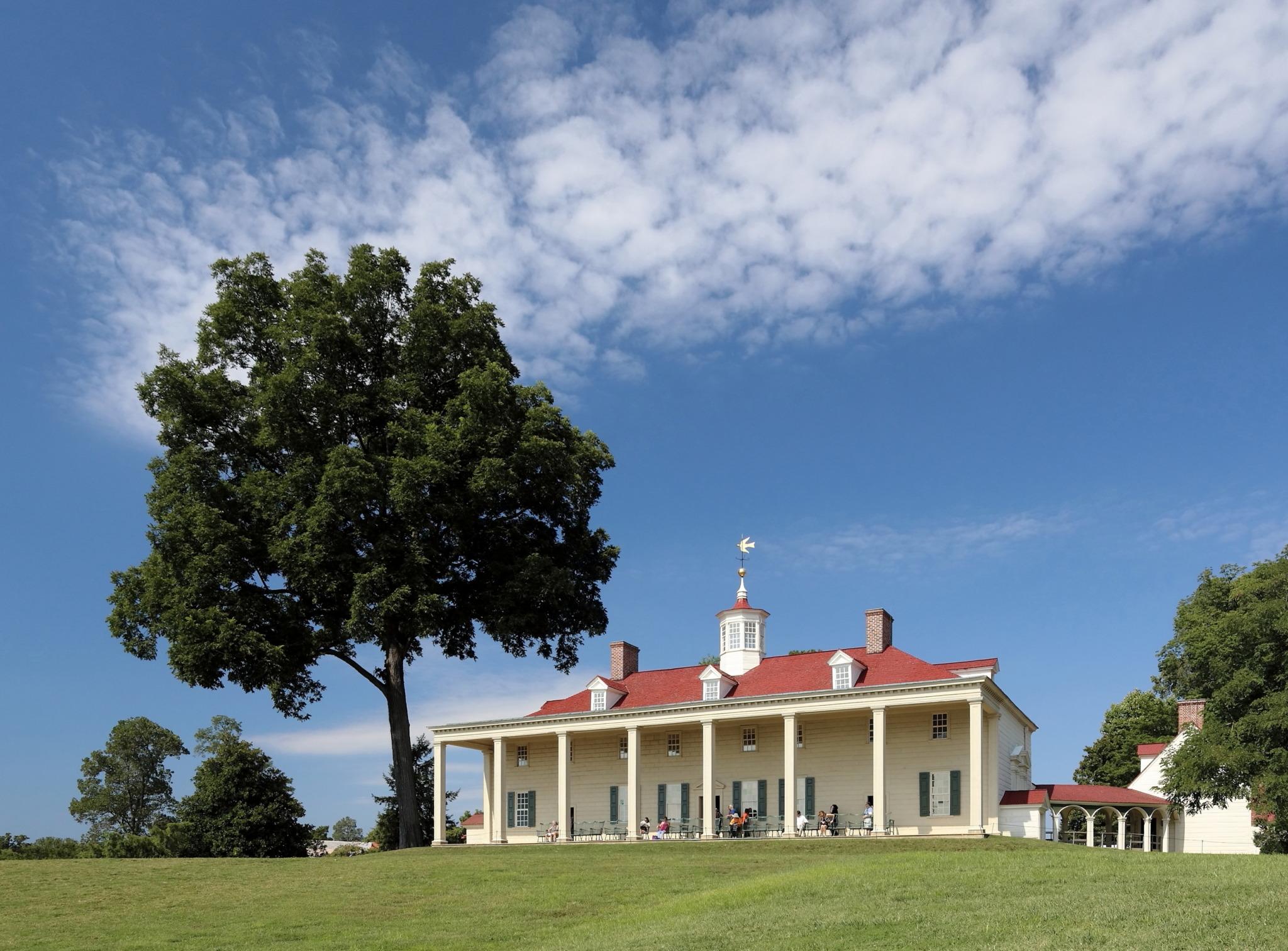 Mount Vernon Daytime