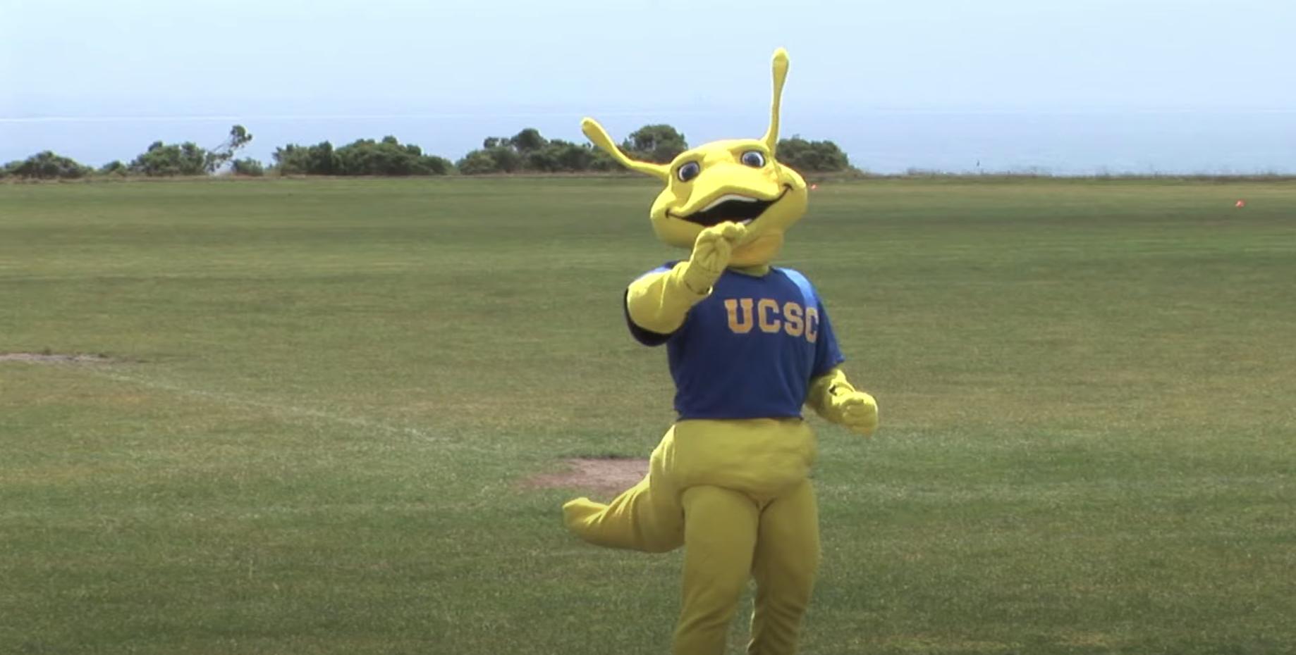 Sammy the Banana Slug: University of California Santa Cruz
